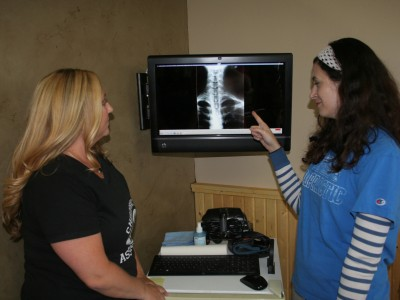 X-Rays – An Important Discovery